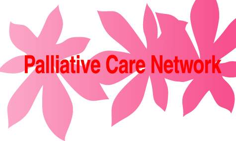 Palliative Care Needs of Ethnic Minority Patients Essay Sample